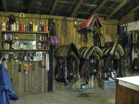 organized tack room